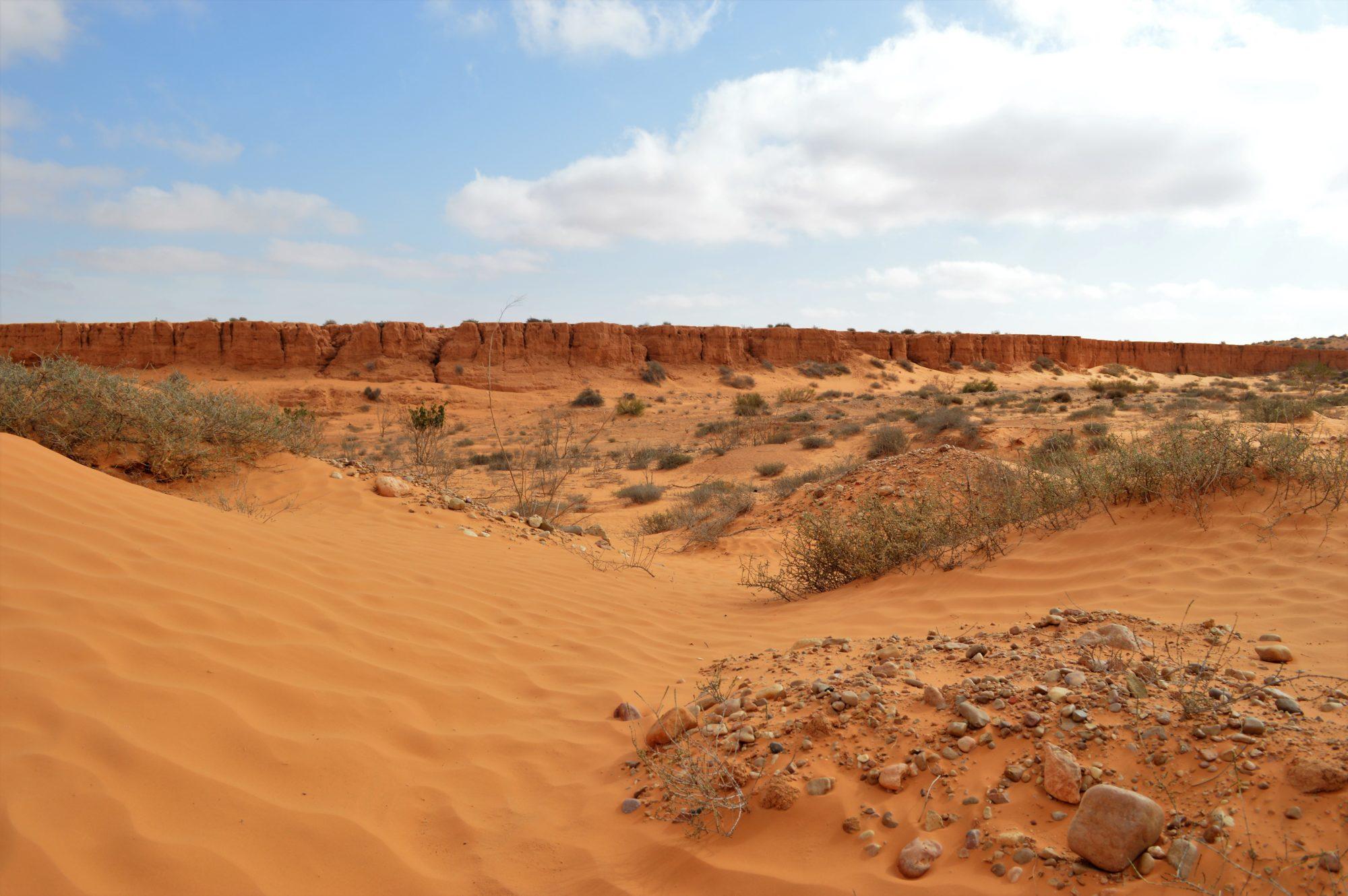 dune-desert-tunisia