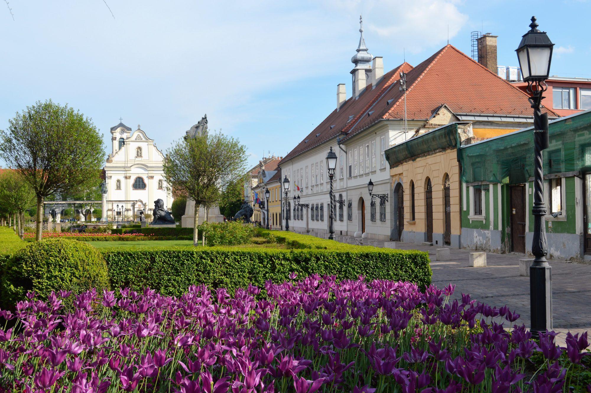 vac-main-square-flowers