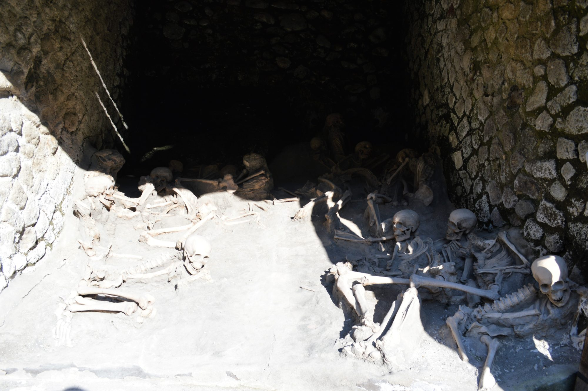 herculaneum-skeletons